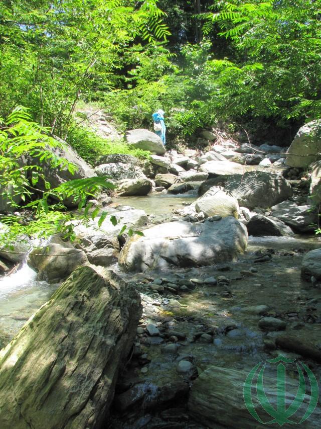 Летом мало воды